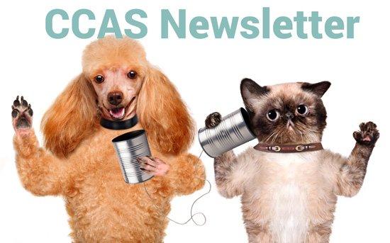 CCAS Newsletter