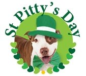 St Pitty's Day Pet Adoption Event