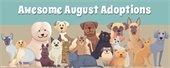 Awesome August Animal Adoptions