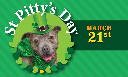 Contra Costa Animal Services March Newsletter