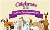 January Pet Adoption Special
