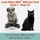 September $20 adoption specials