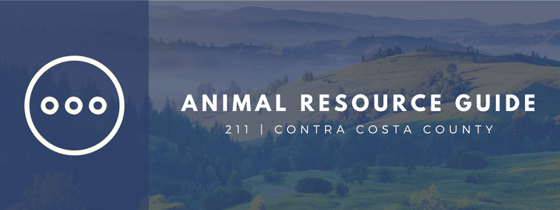 AnimalResources-Header