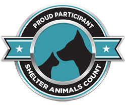 ShelterAnimalsCount