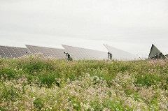 MCE Solar One - field of panels