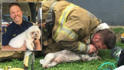 firefighter performing cpr on a dog