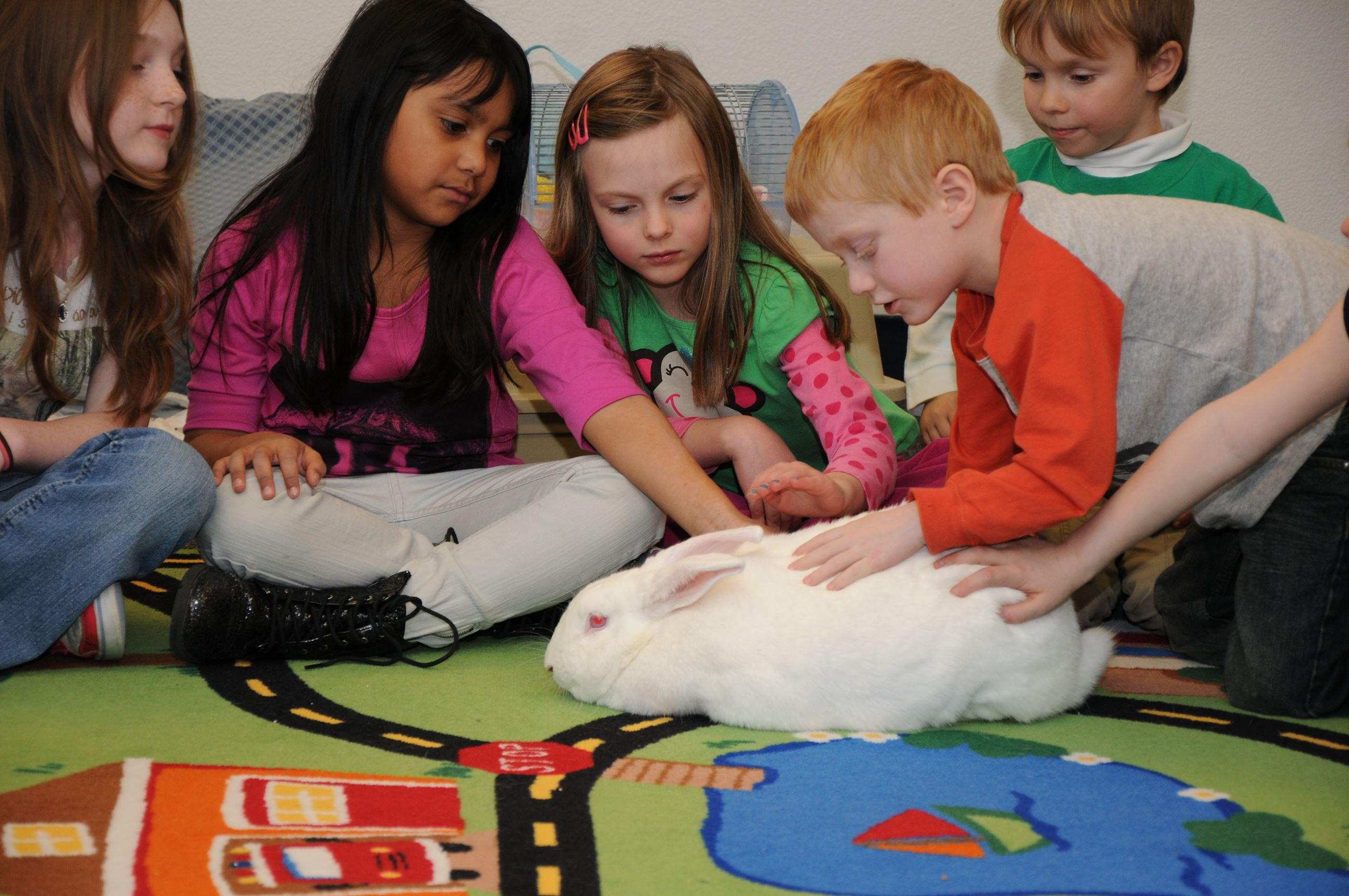 Children sit in a circle together and pet a large white rabbit
