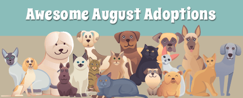 aug-pet-adoptions_web