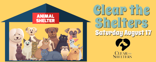 clear-the-shelters_web