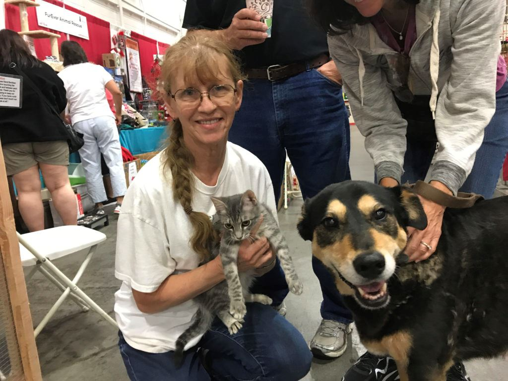 cats and dogs at Bay Area Pet Fair