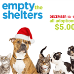 dec-bissell-empty-shelters_web