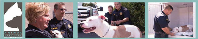 contra costa animal services