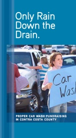 Car Wash Brochure