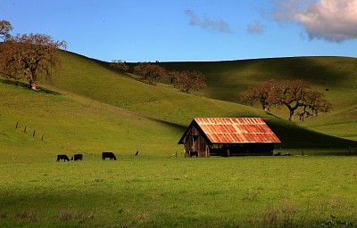 Mt Diablo Barn