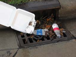 Storm drain with trash 2 (small).jpg