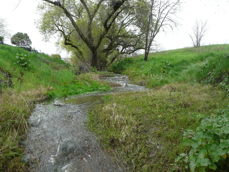 Riverside Ditch, Bay Point