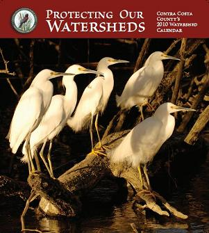 2010 Watershed Calendar Cover.JPG