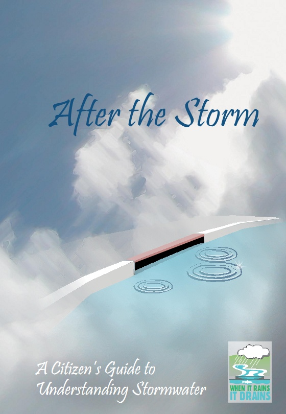 After the Storm Opens in new window